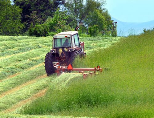 What is The Best Hay Equipment for Your Tractor?