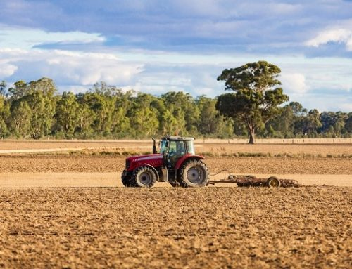 What's the Difference Between a Chain Harrow vs Disc Harrow?